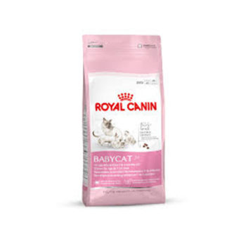 royal canin babycat milk patches and paws. Black Bedroom Furniture Sets. Home Design Ideas